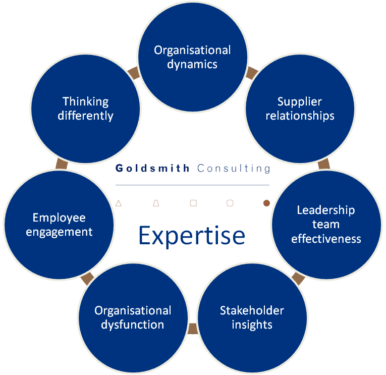 Graphic showing seven expertise areas